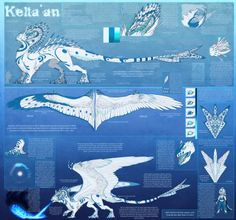 Kelta'an Reference Sheet (Eng) by ~Keltaan on deviantART