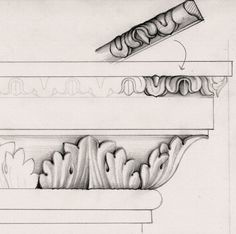 Drawing of acanthus-leaf moulding for top of pedestal.
