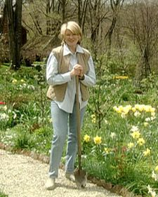 Dividing Perennials Guide - Martha Stewart Home & Garden