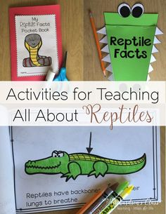 Reptiles Unit for kindergarten, first grade, and second grade! It's such a simple way to integrate reading, writing, science, and research! Everything you need is right there!