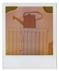 hand bag expired polaroid