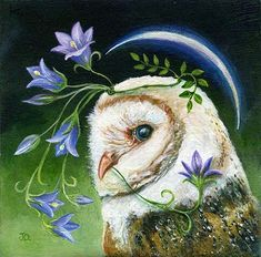 A beautiful owl with crescent moon & flowers // Artist Janie Olsen