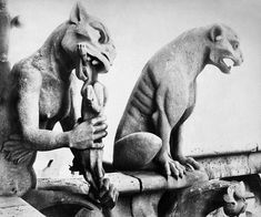 Inspiration for upcoming novel Liberty Smith. Gargoyles of Notre Dame.
