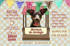 BONDE DA BARDOT: RS: Patas Dadas realiza Aurraial em prol dos animais em Porto Alegre, neste domingo (03/07)