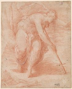 Parmigianino | 1503-1540 Thisbe Falling on Pyramus' Sword. Verso: Slight Sketch of a Palm-Tree Red chalk, heightened with white gouache, on paper; framing lines in black chalk; verso: red chalk. 6 5/16 x 5 3/16 inches