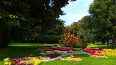 Beautiful Nature Flowers Garden wallpaper.