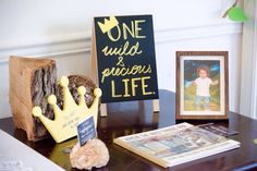 Where The Wild Things Are - First Birthday party