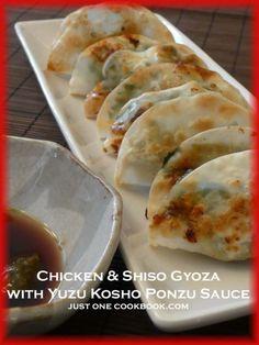 Chicken & Shiso Gyoza with Yuzu Kosho Ponzu Sauce