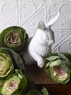 Bunny with cabbage