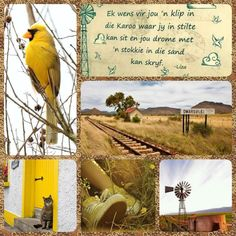 Lekker Dag, Goeie More, Afrikaans Quotes, Wild Fire, Printable Quotes, Good Morning Quotes, Perfect Match, 2 In, Prayers