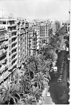 Avenida del Antiguo Reino de Valencia
