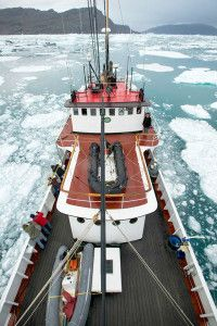 This is our charter vessel MV Cape Race, available for custom charters exclusively from Arctic Kingdom.