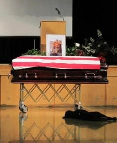 Dogs are amazingly loyal and true. Hawkeye, a Lab, wouldn't leave the coffin of Navy SEAL Jon Tumilson.