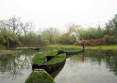 the sinking gardens landscape intervention in XiXi national wetland park