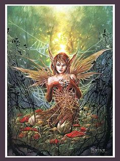 The Cobweb Fairy Art Print