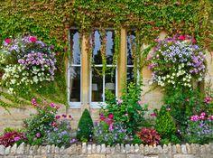 Papel mural casa cubierta de enredaderas y flores