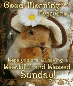 7/12/15 - Have a blessed Sunday