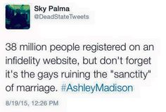 38M people registered on Ashley Madison, but let's blame the gays?