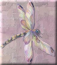 Jodi Bergsma Dragonfly