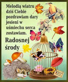Rooster, Teddy Bear, Hedgehogs, Pictures, Polish, Photos, Hedgehog, Resim, Teddybear