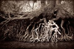 Dryad: a nymph clings to giant tree roots suspended over the river as part of Wonderland photographic fantasy series by Kirsty Mitchell Surrealism Photography, Art Photography, Fashion Photography, Ethereal Photography, Inspiring Photography, Themed Photography, Levitation Photography, Exposure Photography, Winter Photography