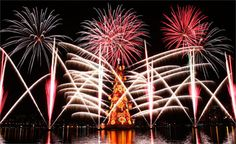 moroccan christmas trees | chtree Giant floating Christmas tree in rio de janeiro brazil