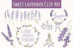 Check out Lavender Clip Art & Vectors by The Pen & Brush on Creative Market Laura Lee, Vector Brush, Wreath Drawing, Clip Art, Laurel Wreath, Little Designs, Pencil Illustration, Graphic Illustrations, Photoshop Brushes