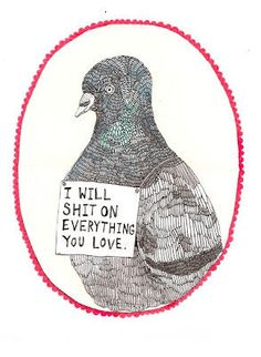And now you all will understand my fear and utter dislike for birds.
