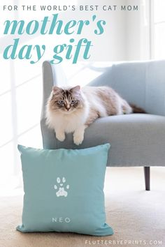 Look no further for the perfect gift for your mom for Mother's Day. Celebrate her love for her sweet kitty with this adorable cat paw print gift idea. Made using just a photo of her cat's paw (no need to try to get a cat to cooperate with an ink pad! Pet Gifts, Cat Lover Gifts, Cat Lovers, Lovers Gift, Dog Spaces, Cat Paw Print, Pet Memorial Gifts, Pet Paws, Cool Cats