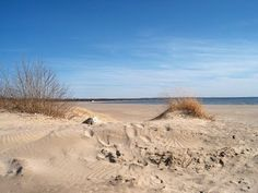 Sauble Beach Dunes, Ontario #88hoursofSummer @88hrs
