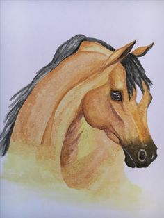 Arabian - Watercolor
