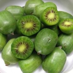 Actinidia arguta 'Issai' (Kiwaï autofertile, Kiwi de Sibérie) Plant