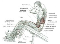 Incline bench sit-ups