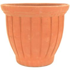 PR Imports 13 in. x 13 in. TerraCotta Clay Tall Tulip Vase at The Home Depot - Mobile Manor Garden, Tulips In Vase, Root System, Container Size, Clay Pots, Potted Plants, Terracotta, Outdoor Gardens, Planter Pots