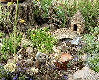 Gotta have a fairy garden! I have some miniatures to start off with. Somewhere. In a box. In one of six storage buildings.