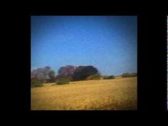 Sun Kil Moon - Benji (Full Album)   the love child of Neil Young, Nick Cave, and Leonard Cohen.