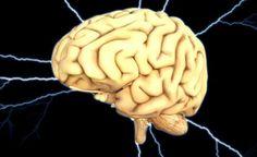 Silné potraviny, které zlepší váš mozek | Báječný lékař