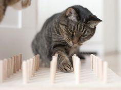 DIY-Anleitung: Fummelbrett für Katzen selber bauen, Katzenspielzeug / DIY-tutorial: crafting playing board for cats, pets toy via DaWanda.com