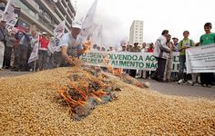 Brazil About to Refuse ALL Imports of U.S.- Grown Genetically-Modified Crops!   As we see more and more nations waking up to the hazards of genetically modified food Brazil are the latest country to impose a ban on importing Monsanto's GM grown crops.  Brazil are the latest country in a long line that are refusing GM crops to be imported into the country highlighting the awakening that is occurring around GM crops. In the U.S. is it hard to buy almost anything in a package from a supermarket…