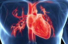 7 symptomer, der kan tyde på, at dit hjerte ikke fungerer korrekt Lose Belly Fat, Comme, Traditional, Heart, Signs, Vape Tricks, Make Up, Shoes, Women