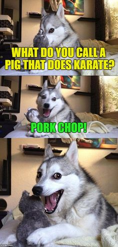 Karate Pig | WHAT DO YOU CALL A PIG THAT DOES KARATE? PORK CHOP! | image tagged in memes,bad pun dog,funny,funny memes,pig,karate | made w/ Imgflip meme maker