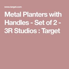 Metal Planters with Handles - Set of 2 - Studios : Target Trough Planters, Metal Planters, Metal Trough, Raised Bed, Diy Bed, Rectangle Shape, A Table, Cleaning Wipes, Studios
