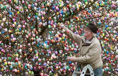 "Easter Eggs Tree ("",)"