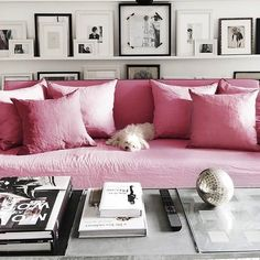 Livingroom Sofa Pink Shelves White Galery Wall Picture