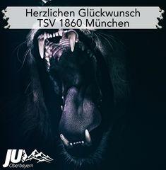 Herzlichen Glückwunsch zum Aufstieg TSV 1860 München! #sechzig #aufstieg #elil #münchen #tsv1860 Georgia O Keeffe, Motivation, Animals, Landing Pages, Bavaria, Blue, Animales, Animaux, Animal