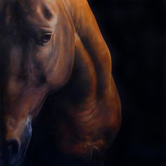 ``Dark Intention`` By Tony O`Connor Equine Art  Ireland