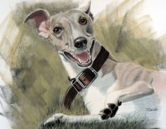 Happy Greyhound, Barbara Hudson-Bebb, B Hudson, SAA Professional Members' Galleries