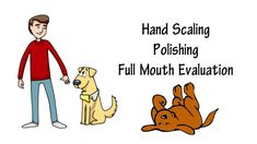 http://www.doggy-smile.com We are highly specialized to give your pet the best non-anesthesia dental cleaning all in a comfort of your own home. We access and have different approach for each individual pet to satisfy their needs.