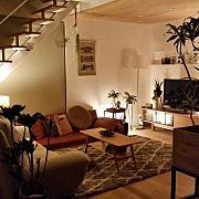 トグルスイッチ/ヘリンボーン/観葉植物/アイアン/TRUCK/工業系照明…などに関連する他の写真