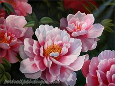 peony oil painting - Google Search